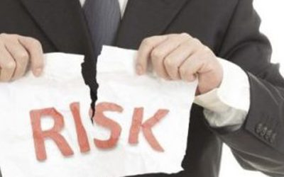 Don't Ignore The Known Elephant – Managing Project Risk